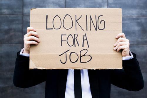 Looking for Work: Matt's Top Tips